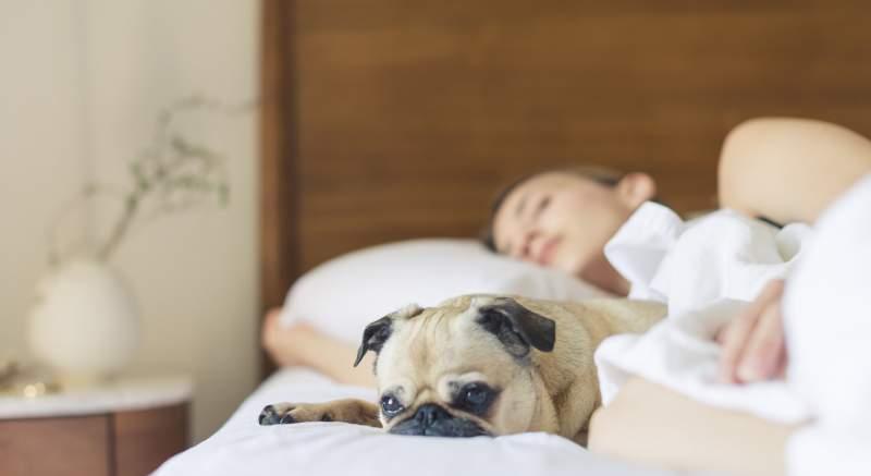 Nepravidelný spánok zvyšuje nebezpečenstvo vzniku depresie, ukazuje nový výskum