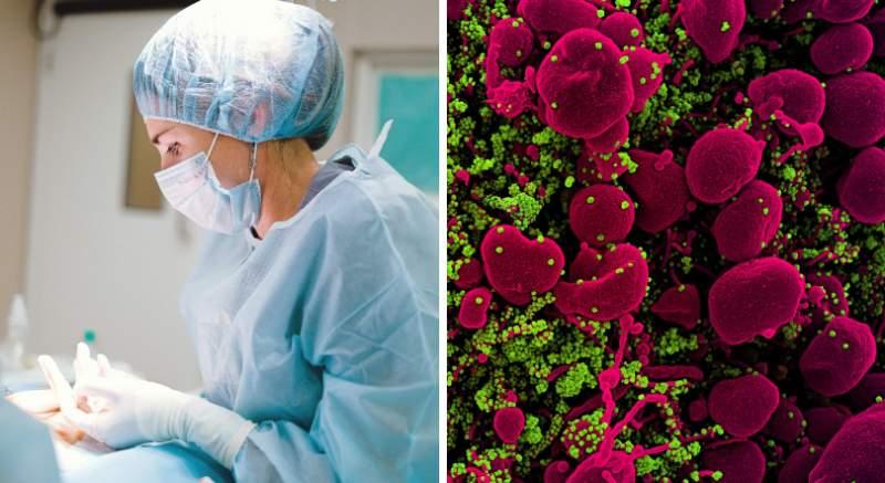 Kardiologička: Pri ochorení COVID-19 môže dôjsť k poškodeniu srdca na rôznych úrovniach