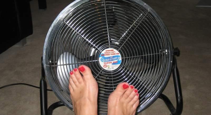 Odborníci radia: Ako sa schladiť počas horúčav? Pomôže ventilátor, ochladzovač vzduchu alebo vás zachráni iba klimatizácia?